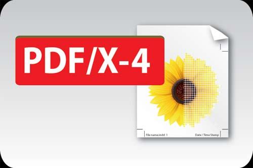 Diferencias en PDF